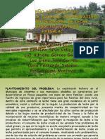 trabajocolaborativofinal-121205165221-phpapp01