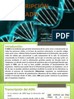 Transcripción del ARN!!!!!!!!!!!!!!!!final(1).pptx
