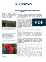 Serb-033-2014-9-NOA_Young Strawberry Growers' Success , serbian.doc