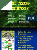 Reaksi Terang Fotosintesis