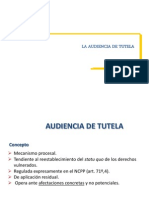 315_33_audiencia_de_tutela