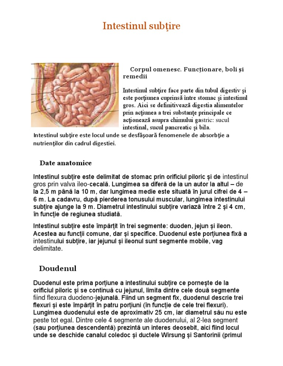 tipuri de ulcere în intestinul subțire