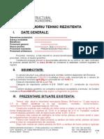 005 Memoriu de Rezistenta Legalizare