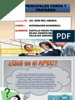 Principales Foros y Tratados de Cooperacion