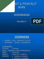 06.b _ Oodiniasis 4 Apr 13 (Gunanti)
