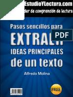 Reporte Gratis Ideas Principales Pdf1