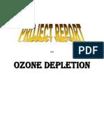 ozonedepletion2-121130101856-phpapp01