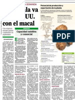 Guatemala va tras EE. UU. con el macal