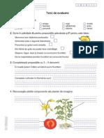 Test plante 1.pdf
