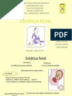 Estatitaca Fetal