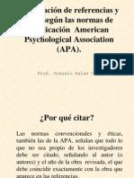 Citas y Referencias Estilo APA