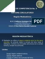 Región Mediastínica