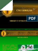 Origen y Evolución de Los Cocodrilos
