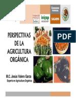 1. Perspectivas de La Agricultura Organica