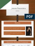 Hormonas Del Páncreas