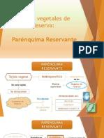 Tejidos Vegetales de Reserva - Parénquima Reservante
