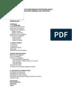 Guia Metodologica Para La Elaboracion de Proyecto PIST III