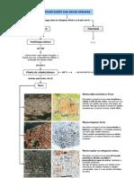 Organização das áreas urbanas (11.º)
