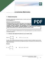 Herram Matem I- Módulo 3.pdf