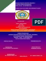 laporan magang pkl