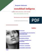 Comunalidad indigena