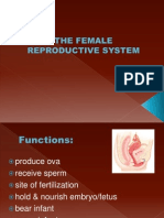21490938-THE-FEMALE-REPRODUCTIVE-SYSTEM.ppt
