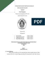 Laporan Praktikum Ilmu Teknologi Pangan Bakso