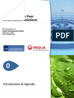 Introduction to Peer Performance Solutions