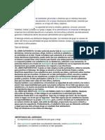 LIDERAZGOO.docx