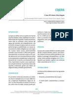 ARTI  28_cojera.pdf