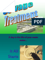 sewage and septic