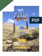 Pasado Presente y Futuro de Catac11