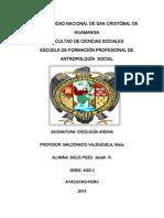 Ideologia Andina_ 400