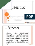 -fosfolípidos