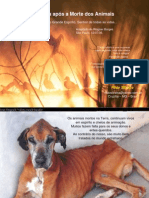 A Vida Apos a Morte Dos Animais