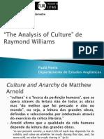 Raymond Williams the Analysis of Culture