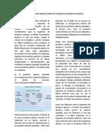 79512374-El-diseno-de-productos-quimicos.docx