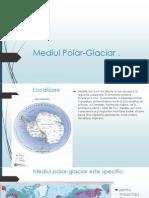 Mediul Polar Glaciar