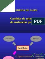 EQUILIBRIO DE FASES