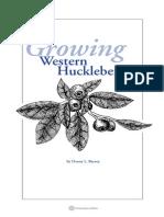Growing Western Huckleberries