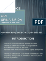 Meningocele & Spina Bifida