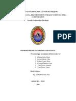 Informe de Ps Organizacional Final