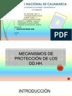 Mecanismos de Proteccion de Los DD.hh.