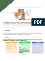 Colocación Sonda Vesical y Nasogástrica Manual