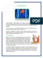 El Sistema Digestivo 2015