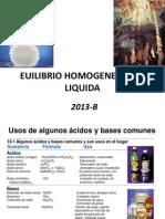 2013 b Equi Homog