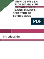 Expresión de WT1 en cáncer de mama y