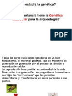 4. Genética