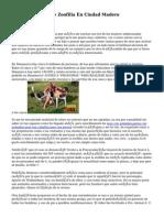 Denuncian Caso De Zoofilia En Ciudad Madero
