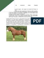 Raças de Cavalos Para Tração